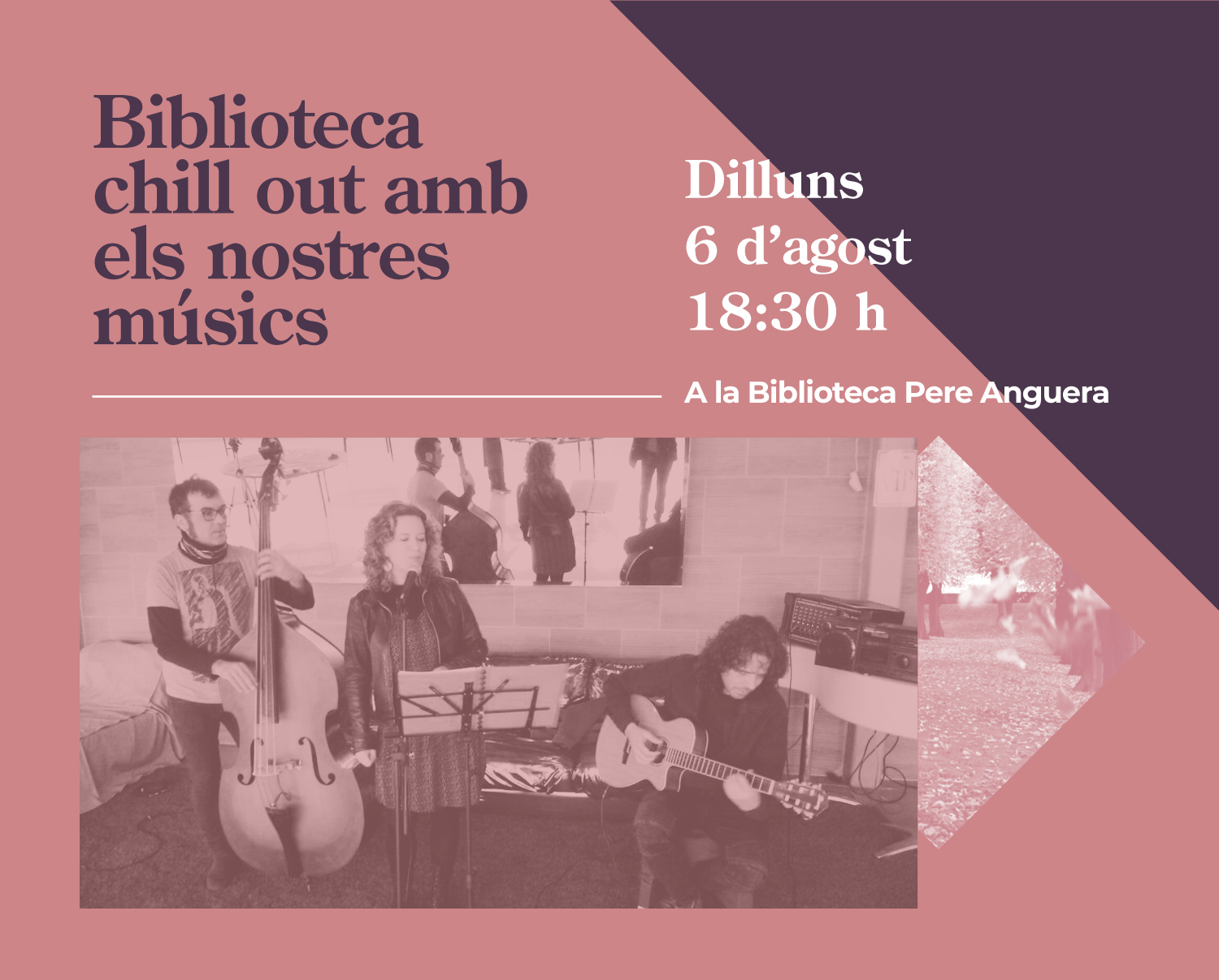 Biblioteques Chill Out. After Dark Trio